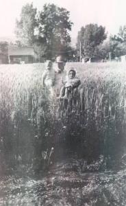Albert Parker in Grain Field